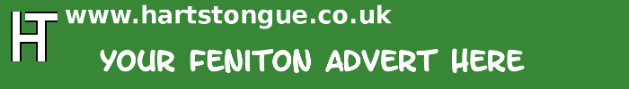 Feniton: Your Advert Here
