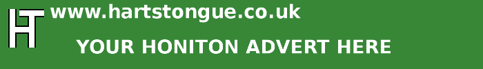Honiton: Your Advert Here