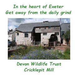 DWT Cricklepit Mill
