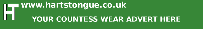 Countess Wear: Your Advert Here