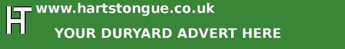 Duryard: Your Advert Here