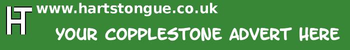 Copplestone: Your Advert Here