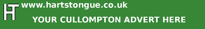 Cullompton: Your Advert Here