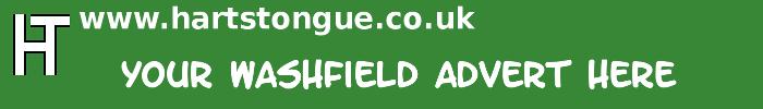 Washfield: Your Advert Here