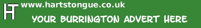Burrington: Your Advert Here
