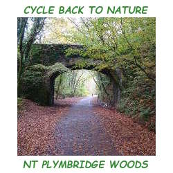 NT Plymbridge Woods