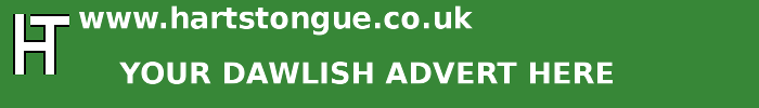 Dawlish: Your Advert Here