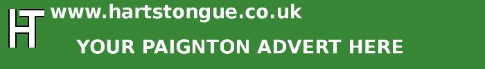 Paignton: Your Advert Here