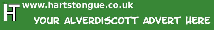 Alverdiscott: Your Advert Here