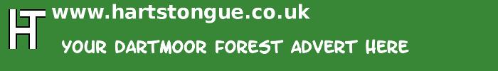 Dartmoor Forest: Your Advert Here