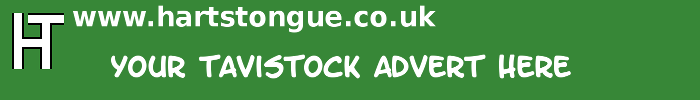 Tavistock: Your Advert Here